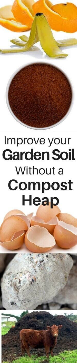 Improve Your Garden Soil Without a Compost Heap