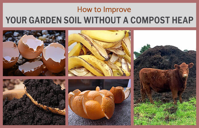 How to Improve Your Garden Soil Without a Compost Heap