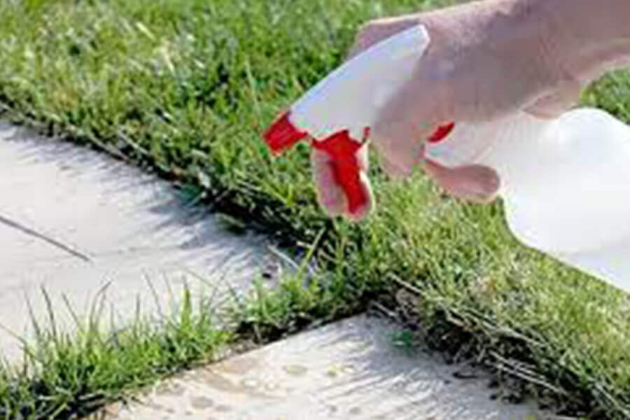Amazing Vinegar Uses In Garden